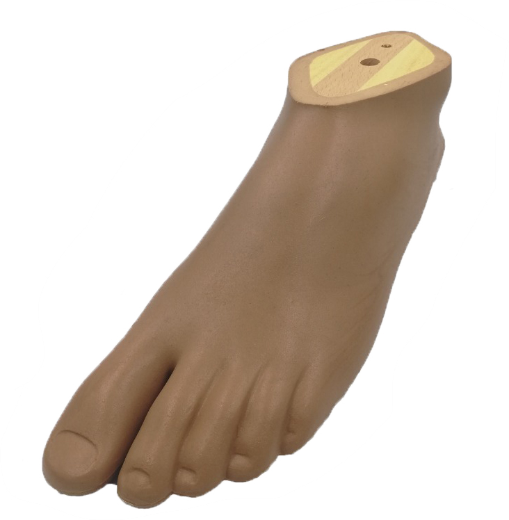 Dynamic Foot For Children 14L, Brown Color